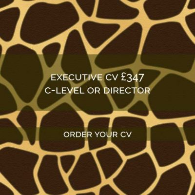 Giraffe-CVs-Executive-CV-writing-service
