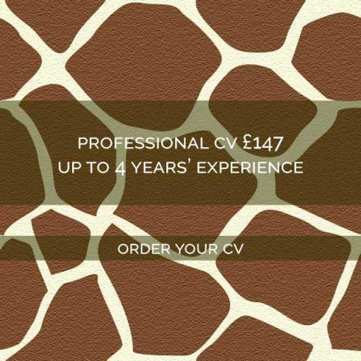 Giraffe-CVs-Pro147-box