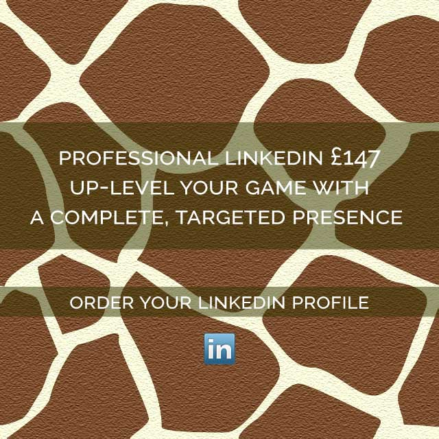 Giraffe CVs Professional LinkedIn Profile