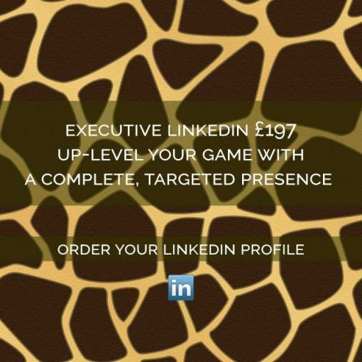 Giraffe CVs Executive LinkedIn Profile
