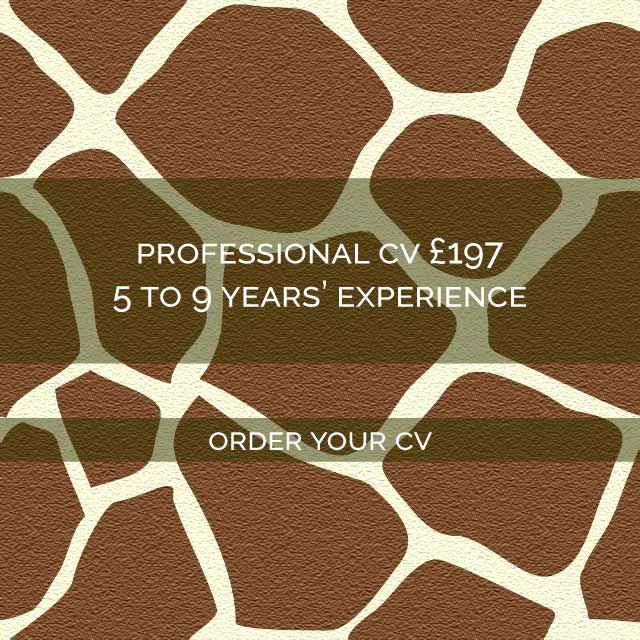 Giraffe-CVs-Professional-CV-Writing-Service